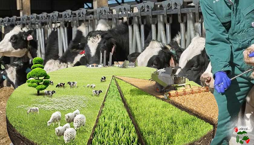 Çiftlik