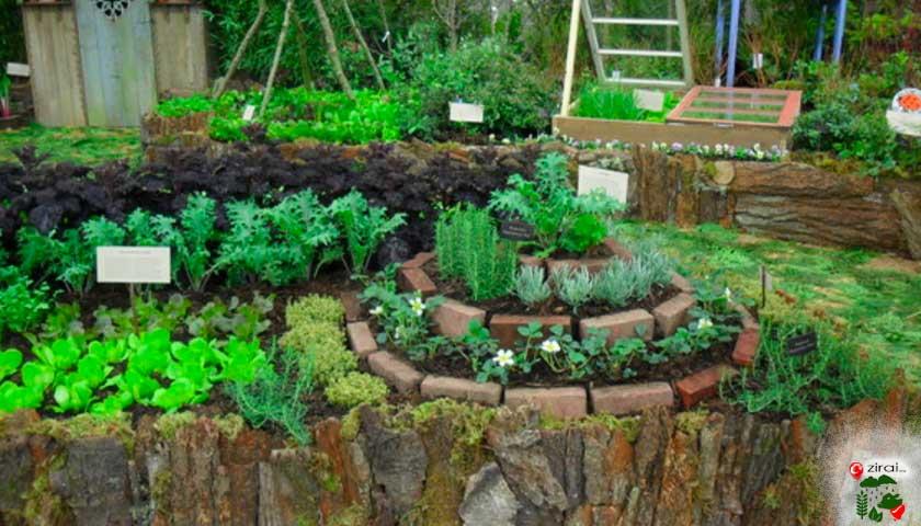 Permakültür bahçe