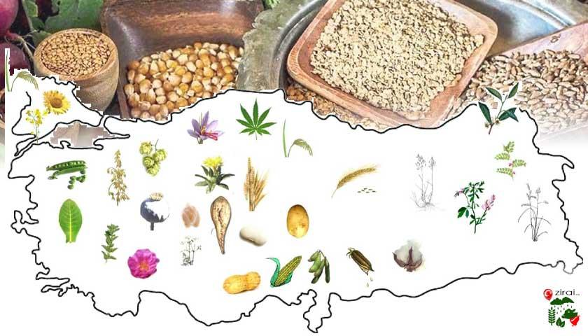 Tarım haritası