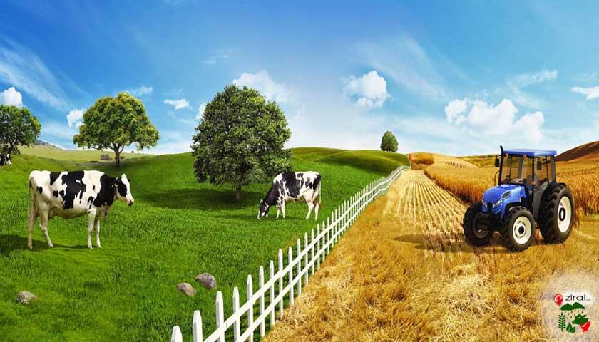 tarım hayvancılık ziraat