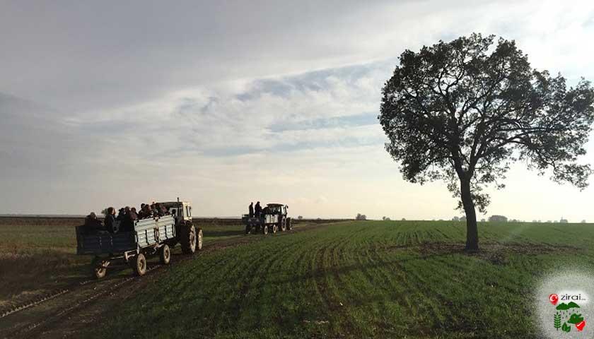 tarlada traktörler