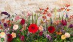 Hangi çiçek hangi mevsimde açar?