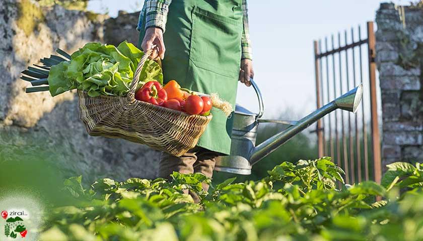 Organik tarım, çiftçi