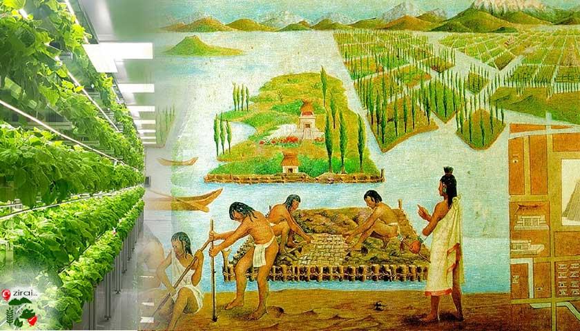 Topraksız Tarım Tarihi